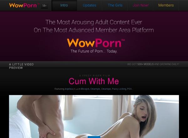Accounts Of Wowporn.com